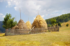 Haystacks. Four haystacks next to wooden fence in yellow grass field. Mountains visible in the background and cloudy sky Royalty Free Stock Photography