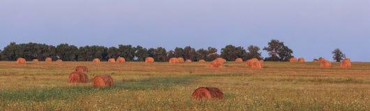 haystacks imagens de stock