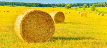 haystacks Стоковые Фотографии RF