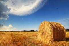 haystacks photographie stock