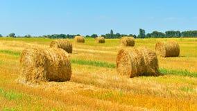 haystacks fotografia de stock royalty free