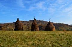 haystacks Image libre de droits