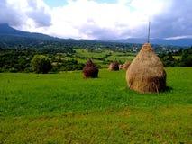 haystacks Fotografie Stock