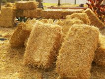haystacks Fotografia de Stock
