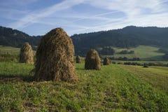 haystacks Стоковая Фотография