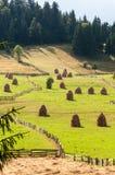 haystacks Immagini Stock