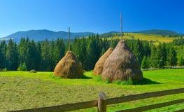haystacks imagem de stock