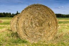 haystacks Στοκ φωτογραφία με δικαίωμα ελεύθερης χρήσης