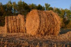 haystacks Foto de archivo