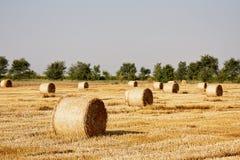 haystacks fotos de stock royalty free