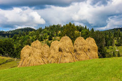 Haystacks. In Apuseni Mountains, Romania, during a sunny summer day Royalty Free Stock Photos