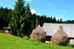Haystacks in Apuseni Mountains, Transylvania Stock Image