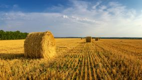 Haystacks in autumn field, rural, Russia, Ural Royalty Free Stock Images