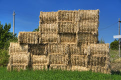 Haystacks bales. Stock Photo
