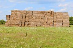 Haystacks bales in countryside Royalty Free Stock Photos