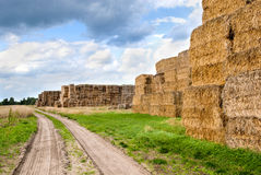 Haystacks bales in countryside Royalty Free Stock Image