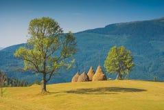 Haystacks in a Carpathian valley Royalty Free Stock Photo