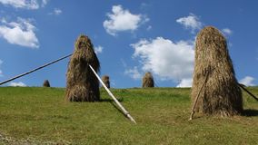 Haystacks in Carpathians stock video