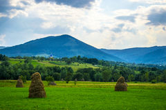 Haystacks and church. Haystacks on the field and church in the distance. Villages of ukrainian Carpathian Mountains inhabited by hard-working and religious Royalty Free Stock Photos