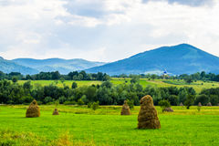 Haystacks and church. Haystacks and the Greek Catholic church in the Carpathian region of Ukraine. Residents of these places strongly believe in God Stock Image