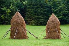 Haystacks in the countryside Stock Image