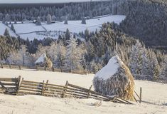 Winter scenery. Haystacks covered in frost in Tihuta Pass Royalty Free Stock Images