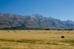 Haystacks de la paja en el campo después de la cosecha Fotografía de archivo libre de regalías