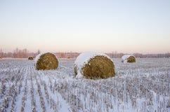 Haystacks en el campo congelado Imagen de archivo libre de regalías