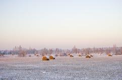 Haystacks en el campo congelado Foto de archivo