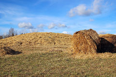 Haystacks on the farm Royalty Free Stock Photography