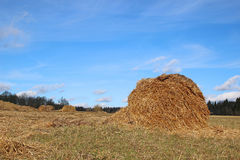 Haystacks on the farm Royalty Free Stock Images