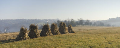 Haystacks in the Field Stock Photography