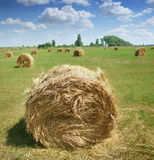 Haystacks on the field Stock Images