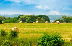 Haystacks on the field. Hay assembled in a stack on field Royalty Free Stock Photo
