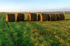 Haystacks on the field in early morning. Royalty Free Stock Photos