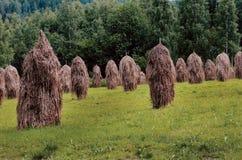 Haystacks in field, Finland Stock Photos