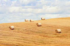 Haystacks on the Field Royalty Free Stock Photography