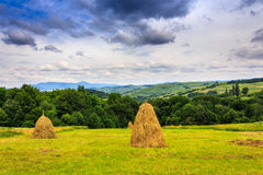 Haystacks in a field near the forest and mountain Royalty Free Stock Photos
