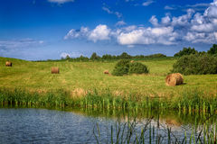 Haystacks on the field with a pond Royalty Free Stock Photography