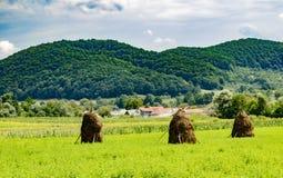 Haystacks in a Field in Romania stock photo
