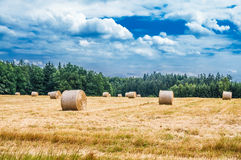 Haystacks on the field Royalty Free Stock Photos
