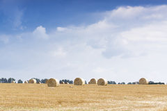 Haystacks on the field Stock Photos
