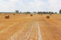 Haystacks field sun farm Royalty Free Stock Photography
