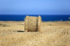 Haystacks on field Stock Image