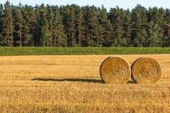 Haystacks in the field Stock Photos