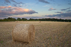 Haystacks in a field at sunset Stock Images
