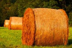 Haystacks Stock Images