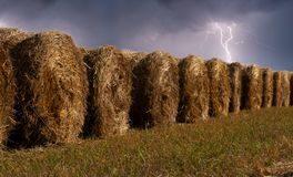 Haystacks in the field during the thunderstorm Royalty Free Stock Photo