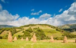 Haystacks on field in the Ukrainian Carpathians Royalty Free Stock Photo