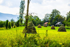 Haystacks on the field and wooden houses Stock Photography